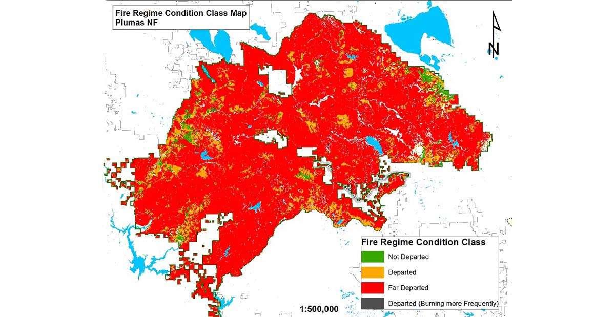 Sierra Forests Threatened Plumas News