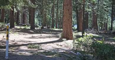 Hard winter for Lake Almanor Recreational Trail