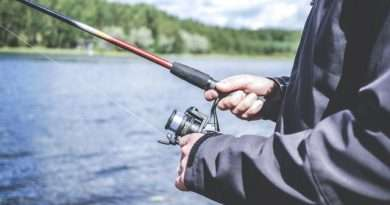Plenty of options for both trout and bass anglers