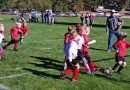 Perfect fall weather benefits energetic youth soccer