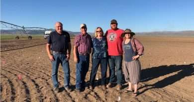 Sierra Valley ranchers begin venture with hemp