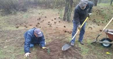 Volunteers welcome for trail restoration