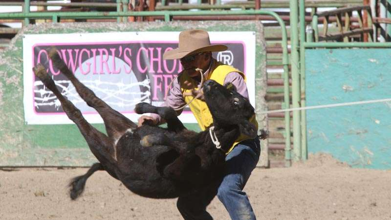 Frc Finishes In Top Three At Hometown Rodeo Plumas News