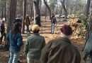 Group seeks healthy, resilient forests and communities