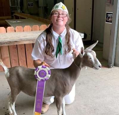Local 4-Her successful at state fair - Plumas News