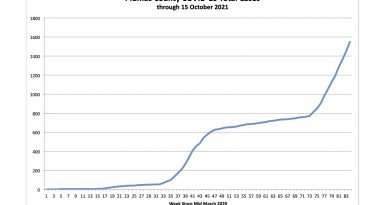 Charting the increase in Plumas COVID cases