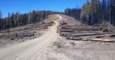 Looking out on what's left after the fire — we need to be prepared